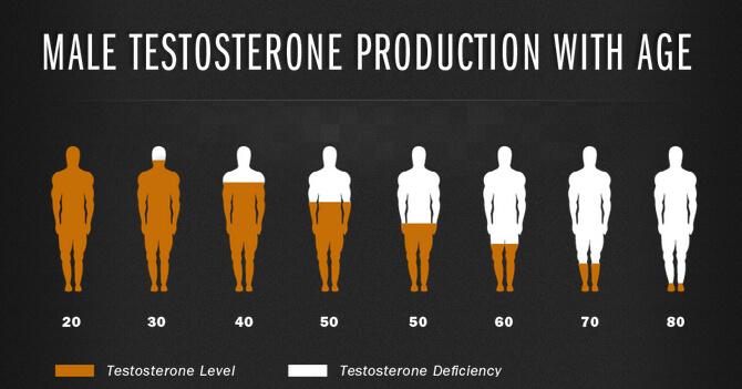 kaip pakelti testosterono erekciją